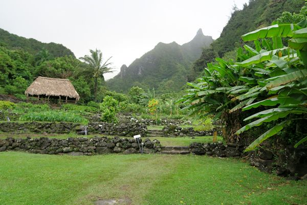 A guide to northeastern gardening national tropical - National tropical botanical garden kauai ...