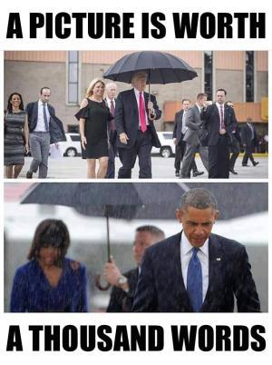 Lupe, der Satire-Blog: Best of Donald Trump (Bilder ...