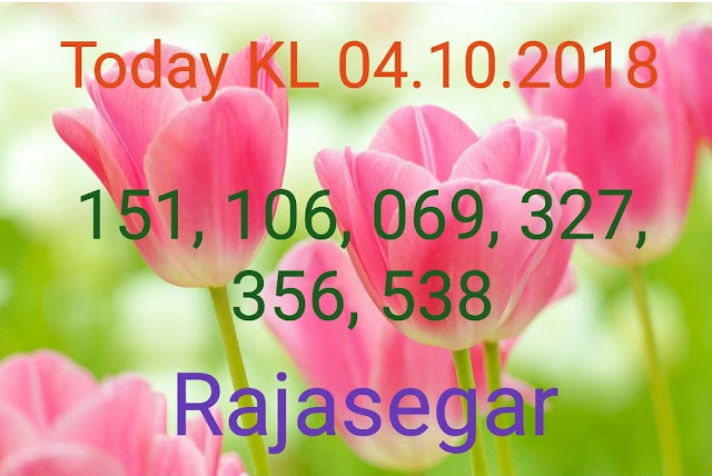 Kerala lottery abc guessing Karunya Plus KN-233 on 04.10.2018 by Rajasegar