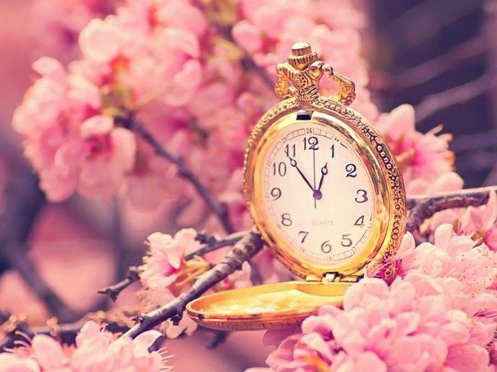 Fond ecran printemps fleurs fonds d 39 cran hd for Image pour pc