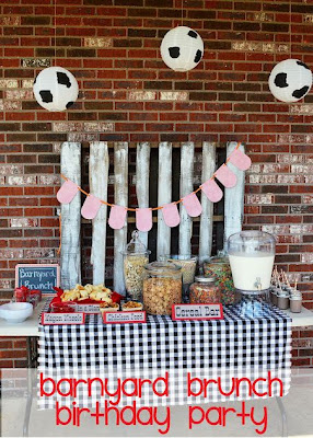 Barnyard Theme Birthday Party