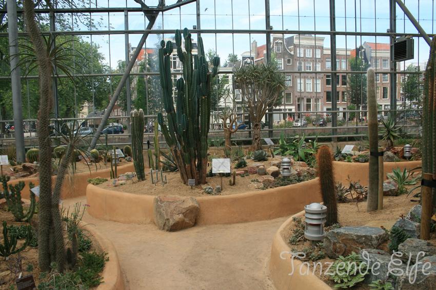 Tanzende Elfe Amsterdam No2 Botanischer Garten