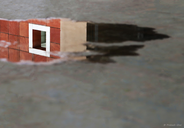 Reflection of White Square in a Puddle of Water at Jawahar Kala Kendra, Jaipur