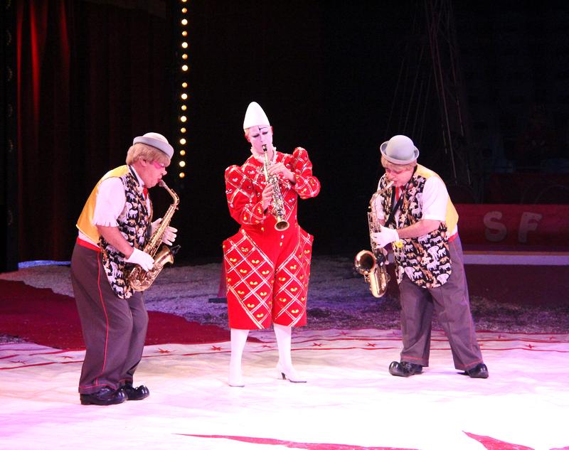 Sirkus Finlandia Eläimiä