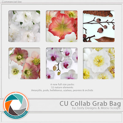 https://www.digitalscrapbookingstudio.com/commercial-use/grab-bags/cu-collab-grab-bag-by-zesty-designs-and-manu-scraps/