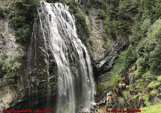 Narada Falls Mt Rainer