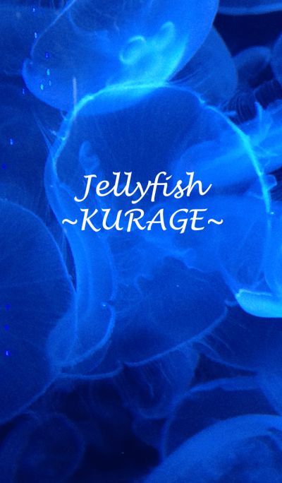 Jellyfish~KURAGE~