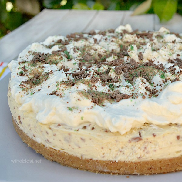 Irish Cream and Chocolate Cheesecake ~ A Divine Irish Cream Liqueur based Cheesecake, perfect NO-BAKE dessert for St Patrick's Day {or any other day!}