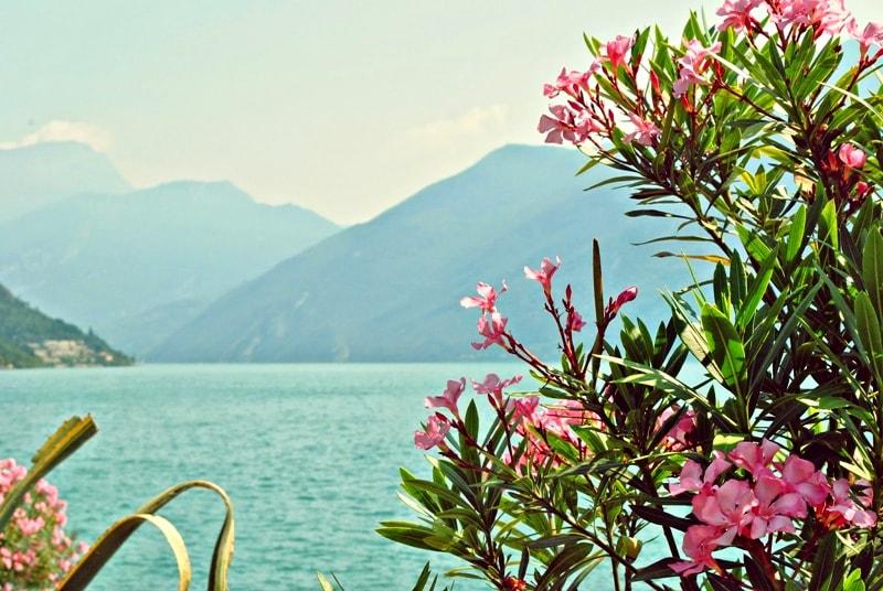 Limone am Gardasee