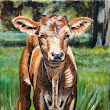 Day 29 30 in 30, Baby Texas Longhorn cow painting