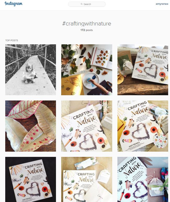 Crafting With Nature by Amy Renea Page St Publishing