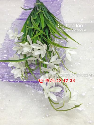 Phu kien hoa pha le tai Pho Hue