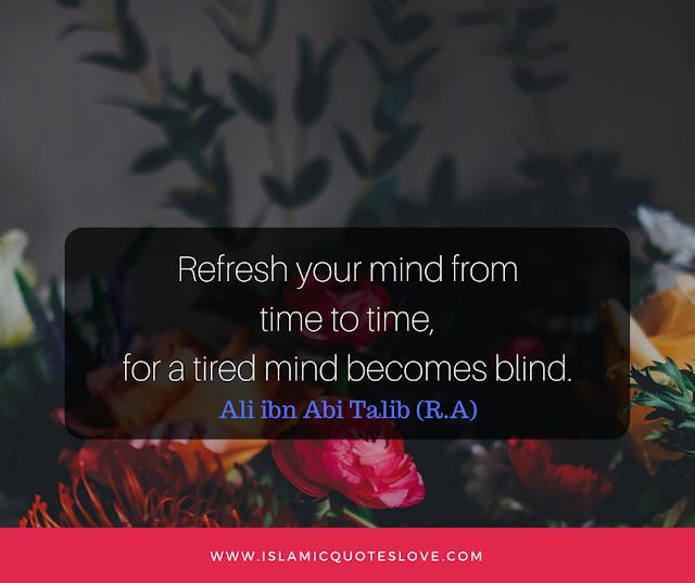 Refresh your mind from time to time, for a tired mind becomes blind.