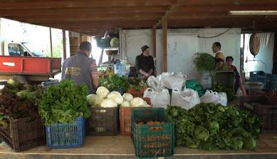 Το καλάθι-διανομή βιολογικών λαχανικών
