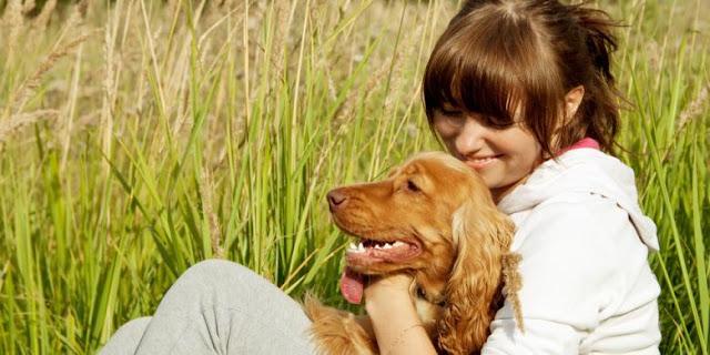 Manfaat dari persahabatan dengan hewan