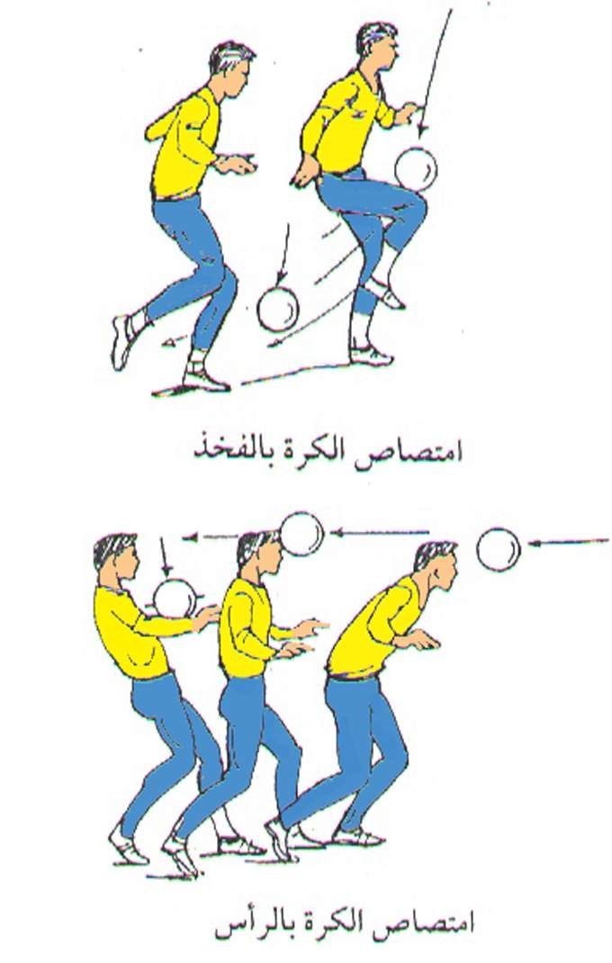 انشاء كرة القدم