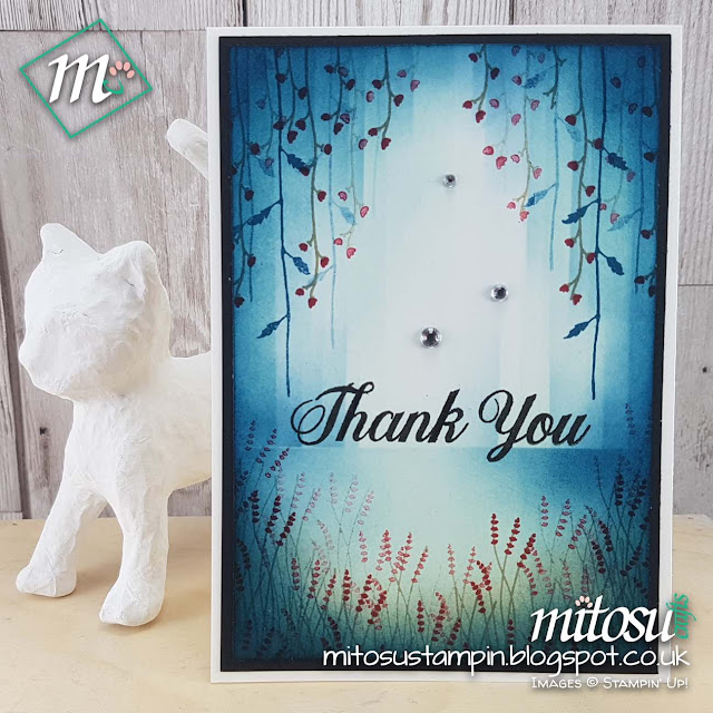 Stampin Up UK Daisy Delight Jay Soriano Mitosu Crafts Order Stampinup Online Shop 2
