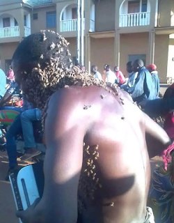 Bees attack a   thief who stole woofer and force him to return it to the owner (Photos) OGA 3 days ago A thief was nabbed in Masindi town Uganda after a witch doctor sent bees to smoke him out.