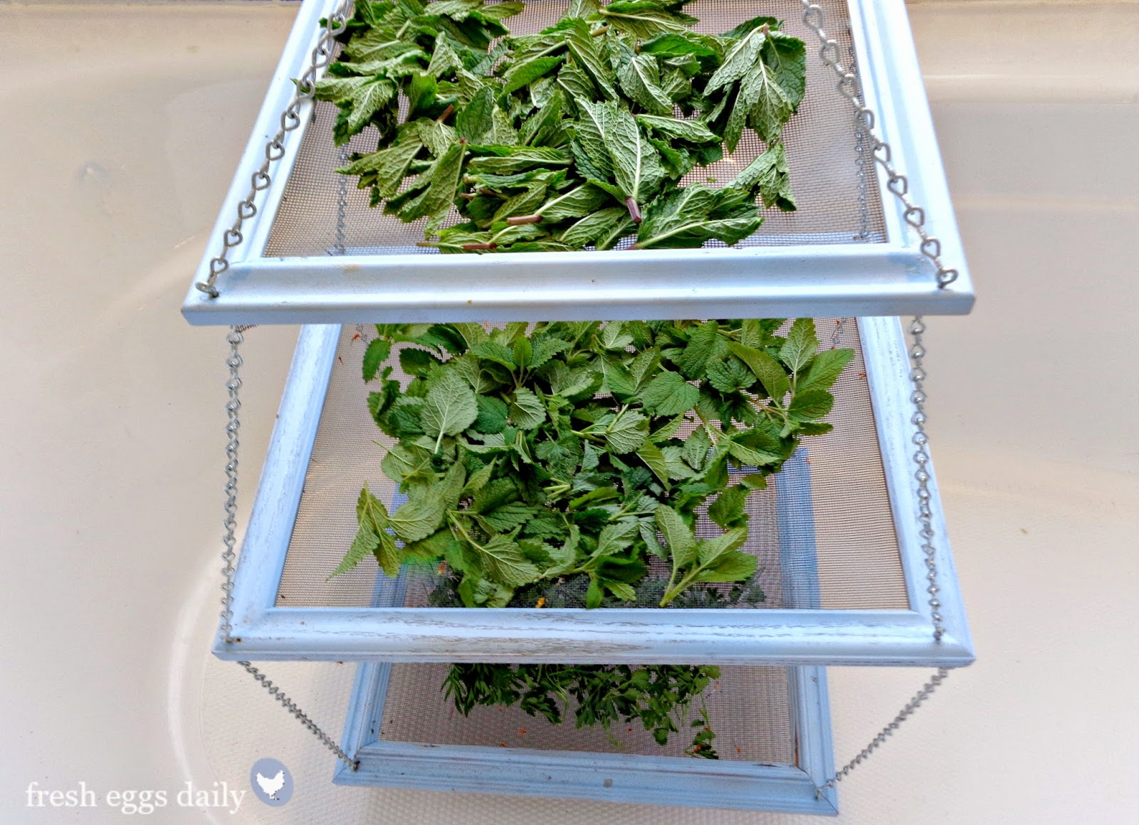 DIY Tiered Herb Drying Rack Using Repurposed Picture Frames | Fresh ...