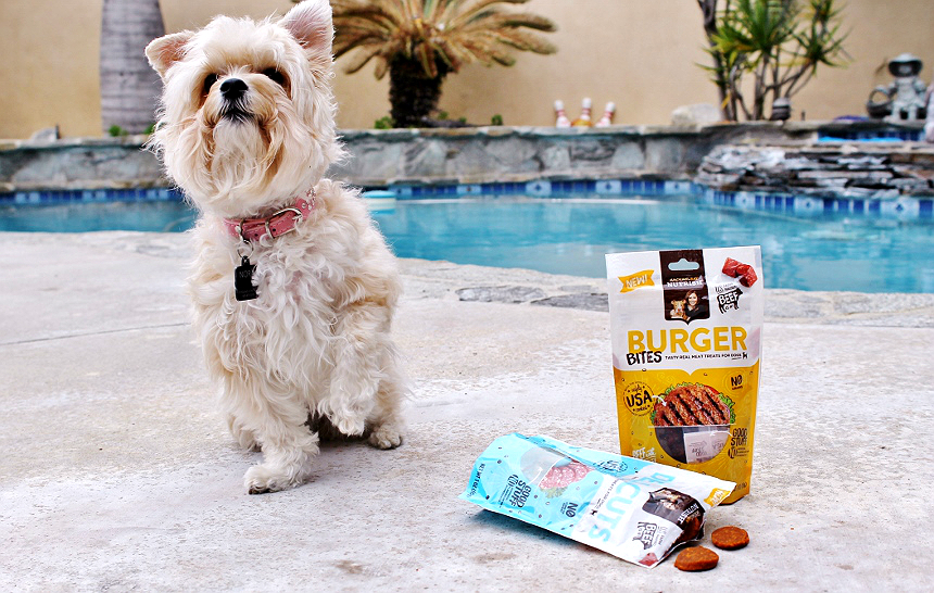 Discover new Rachael Ray Nutrish treats in fun varieties suchas Pawsta and Meatloaf Morsels. #NutrishPets #TreatingWithNutrish AD