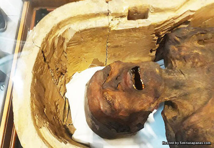 Misteri 'Mumia Menjerit' Zaman Firaun