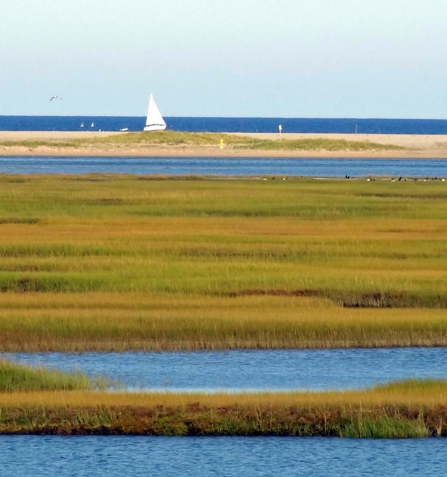Cape Cod National Sea Shore: Joe's Retirement Blog: Fort Hill, Eastham, Cape Cod
