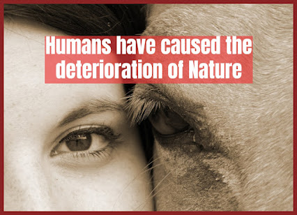 The accelerated deterioration of nature and the increase of extinct species
