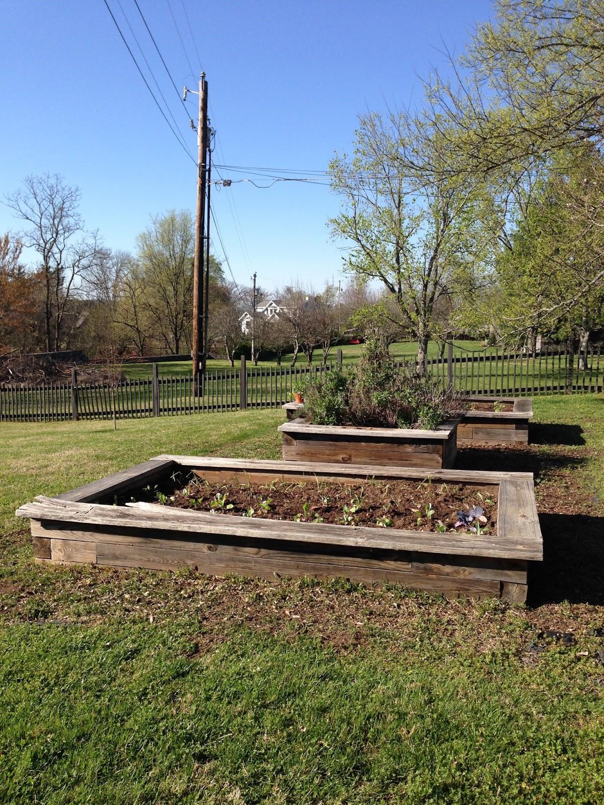 The Kitchen Garden Rattlebridge Farm The Kitchen Garden In Late March
