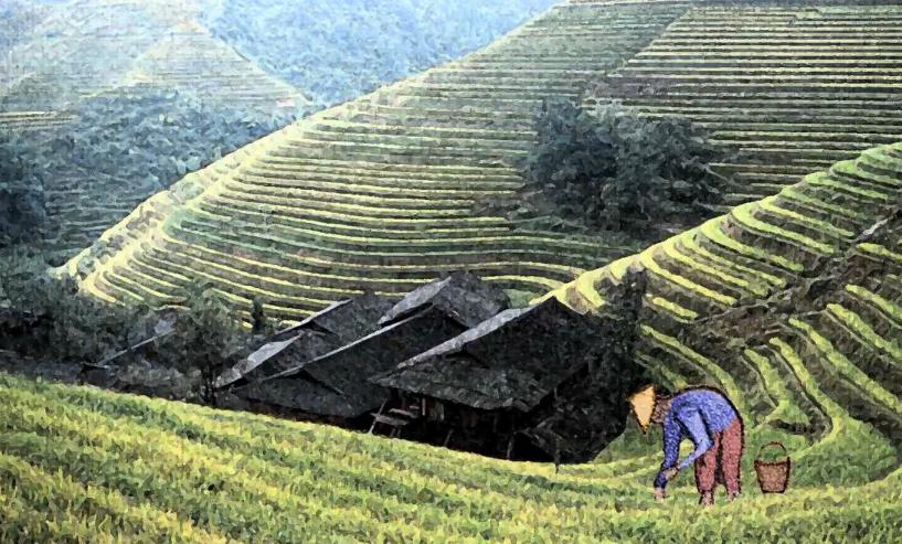 Granjero cultivando tierra