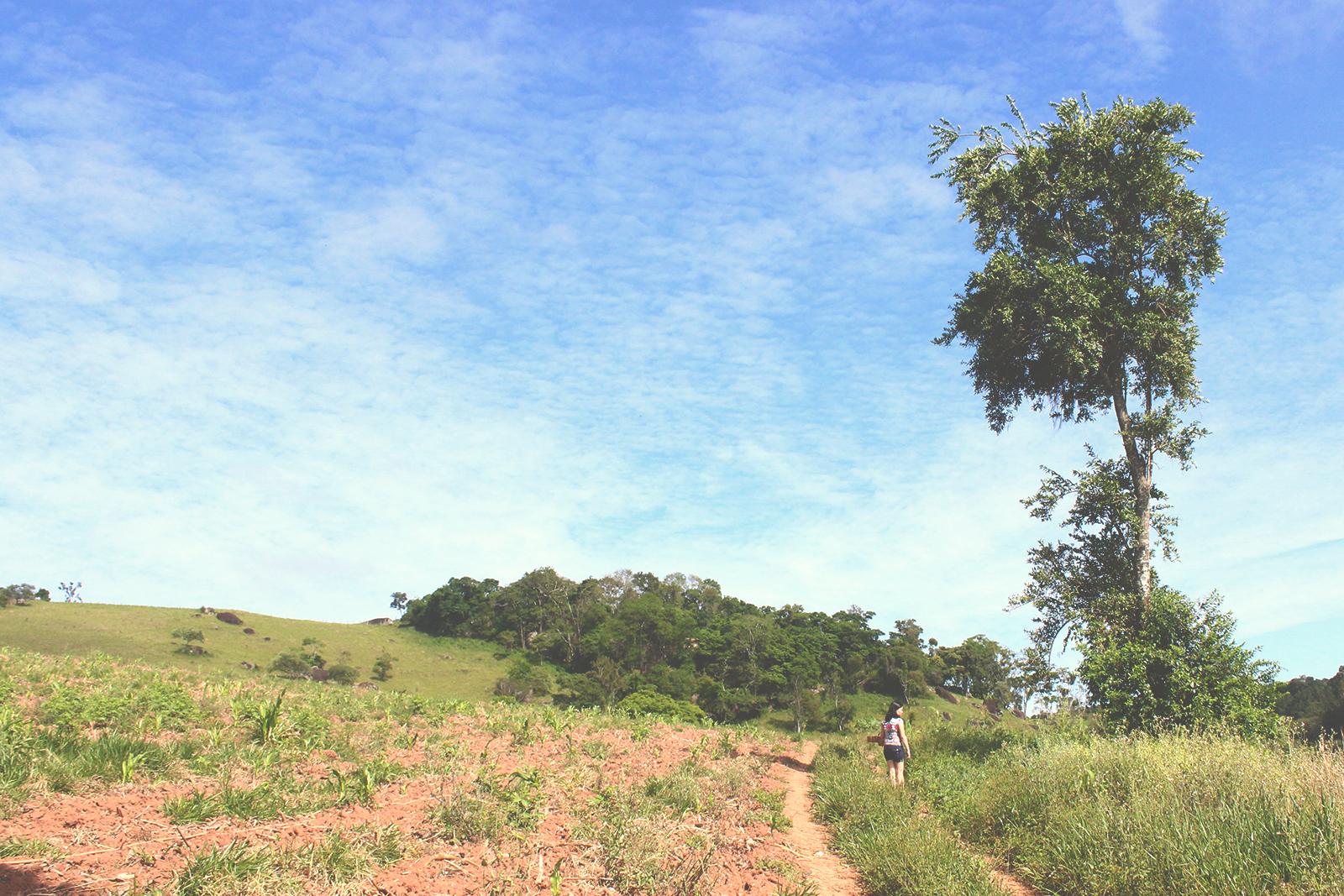 paisagem céu azul sítio