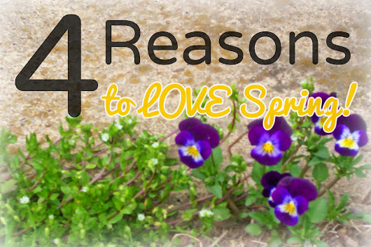 Four Reasons to LOVE Spring! Once it comes...