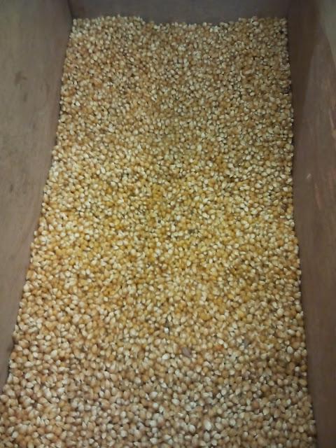 Productos Agropecuarios Contingentes