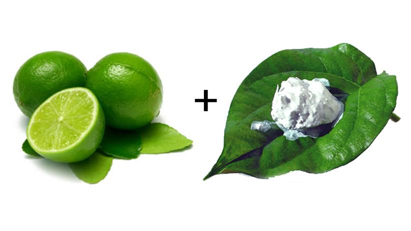 Image result for kapur makan daun sirih limau nipis