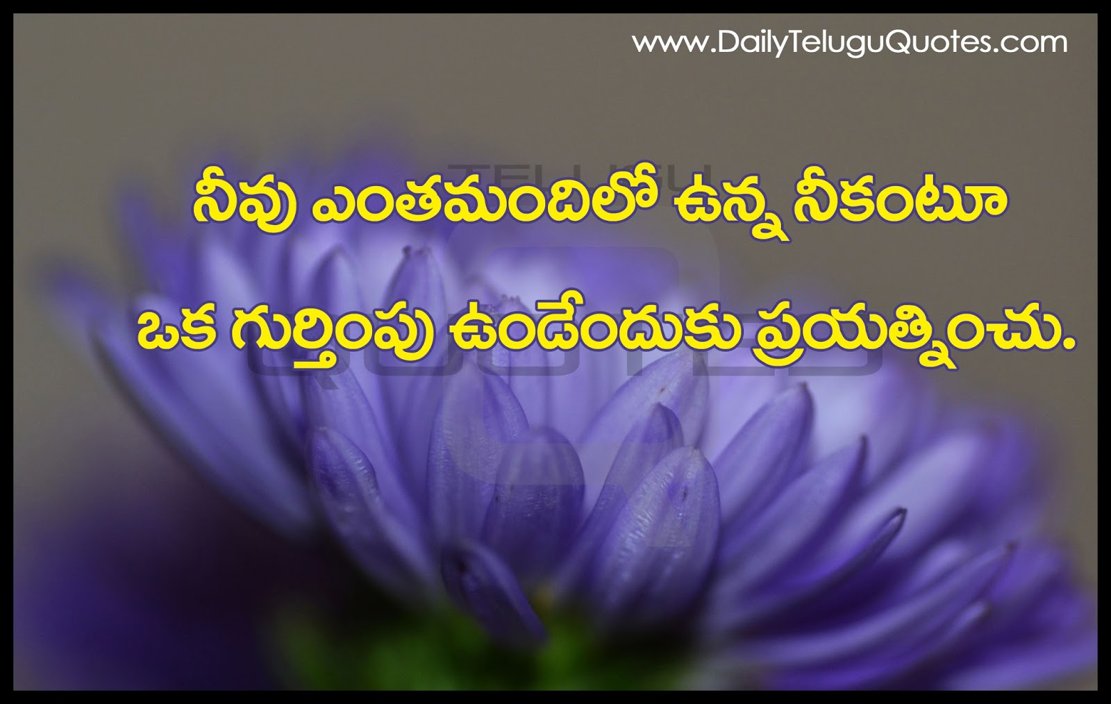 Raja Rani Hd Wallpapers With Quotes Self Inspiration Thoughts And Quotes In Telugu