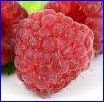 manfaat buah frambos