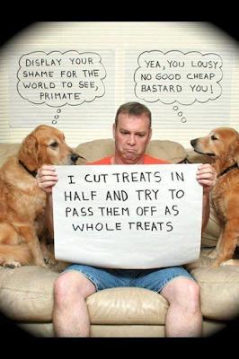 Shame on you human!