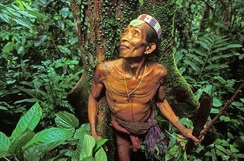 Suku Taman Nasional Siberut