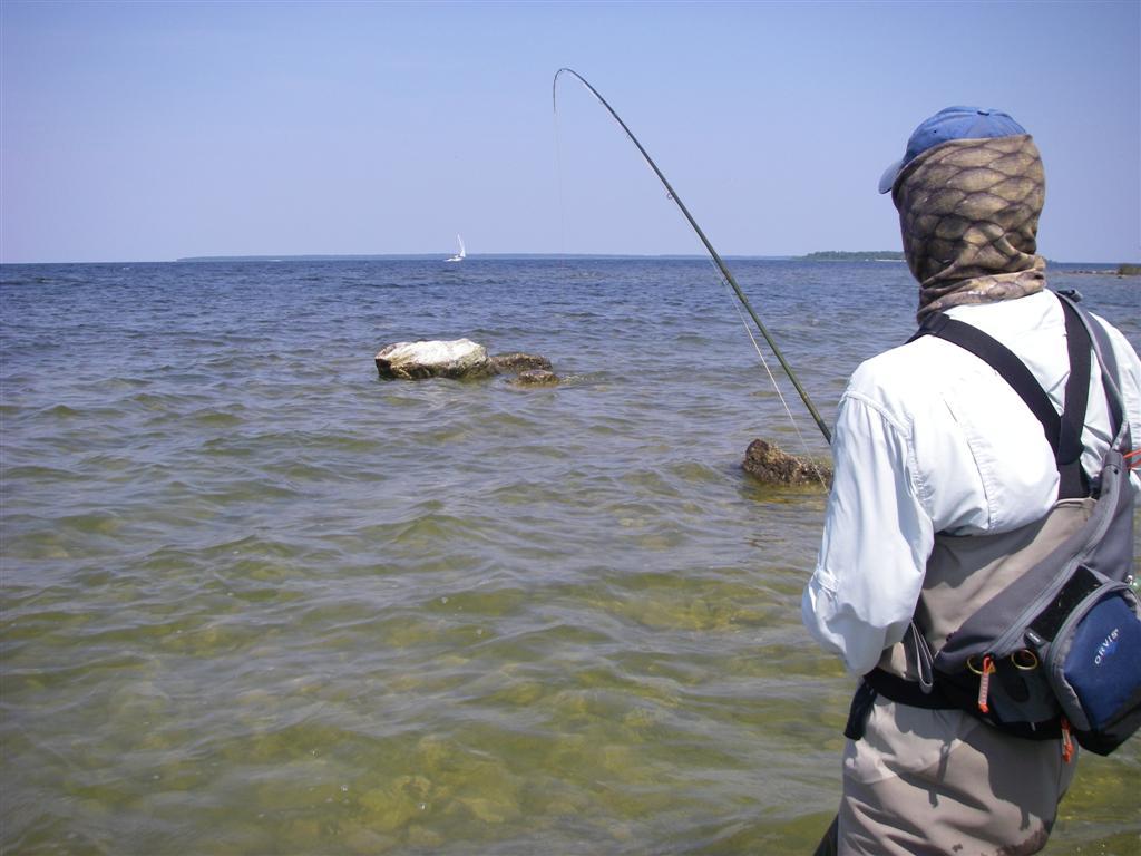 waley casting fishen