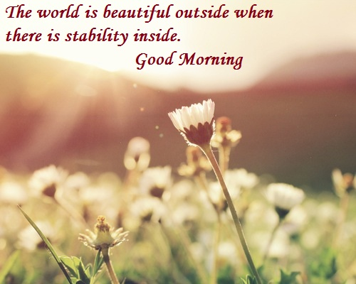 Good Morning Flower Images With Hindi Quotes