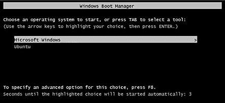 dual boot linux windows