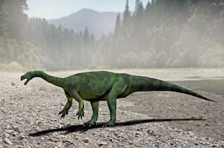 Aardonyx Dinozoru ve Özellikleri