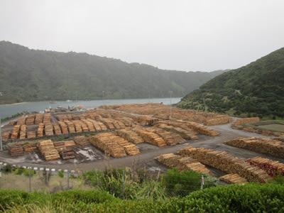 Muelle de madera de Picton, desde la Queen Charlotte Drive, Nueva Zelanda