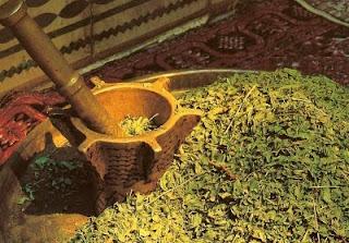 feuille de henné broyée