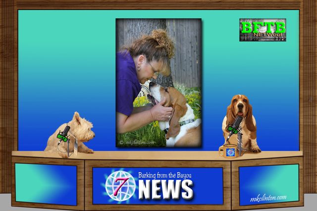 BFTB NETWoof News reports on a dog's love