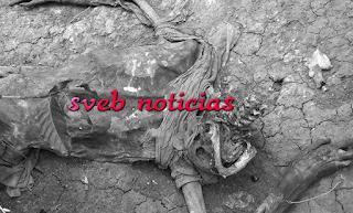 Hallan el cuerpo putrefacto de una persona en Huatusco Veracruz