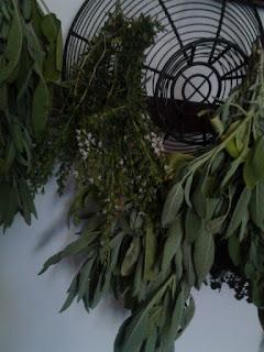 Sécher le plantes en les suspendant
