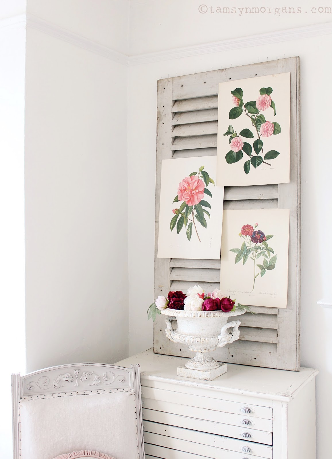 Tams Near Me >> Vintage Botanical Prints - The Villa on Mount Pleasant