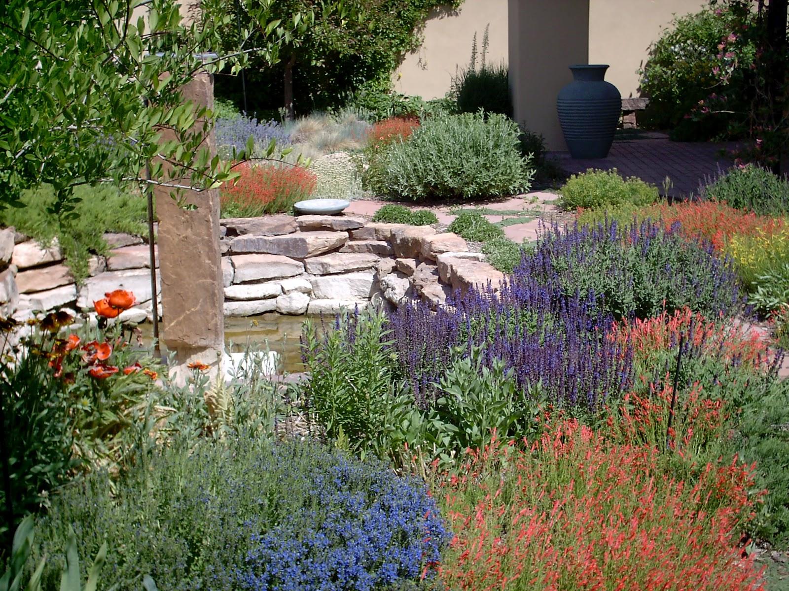 Landscaping Ideas, Color, Backyard Inspirations, Xeriscape ... on Backyard Xeriscape Designs id=81139