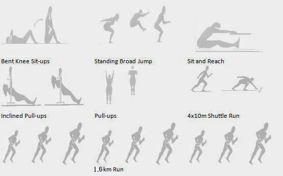 Run, Baby, Run! Training for NAPFA