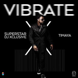 VIDEO: DJ Xclusive & Timaya - Vibrate